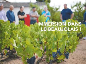 Read more about the article Glou Glou #7 arrive avant le Beaujolais nouveau !