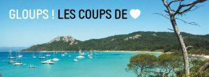 Read more about the article GLOUPS ! Les coups de cœur