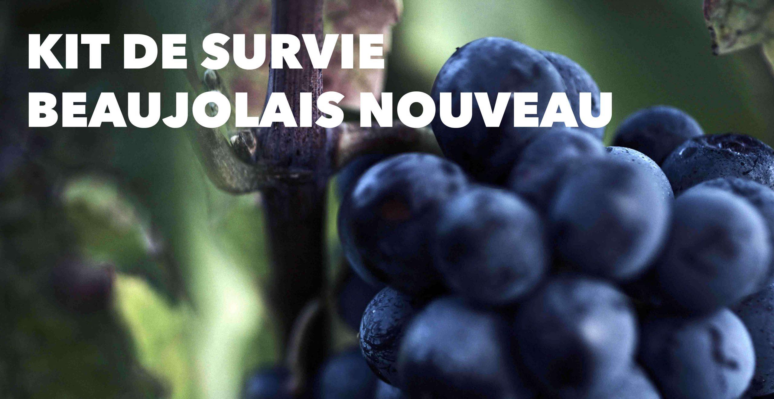 Read more about the article KIT DE SURVIE (du beaujolais Nouveau)