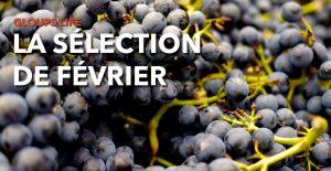 Read more about the article Gloups life : la sélection de Février