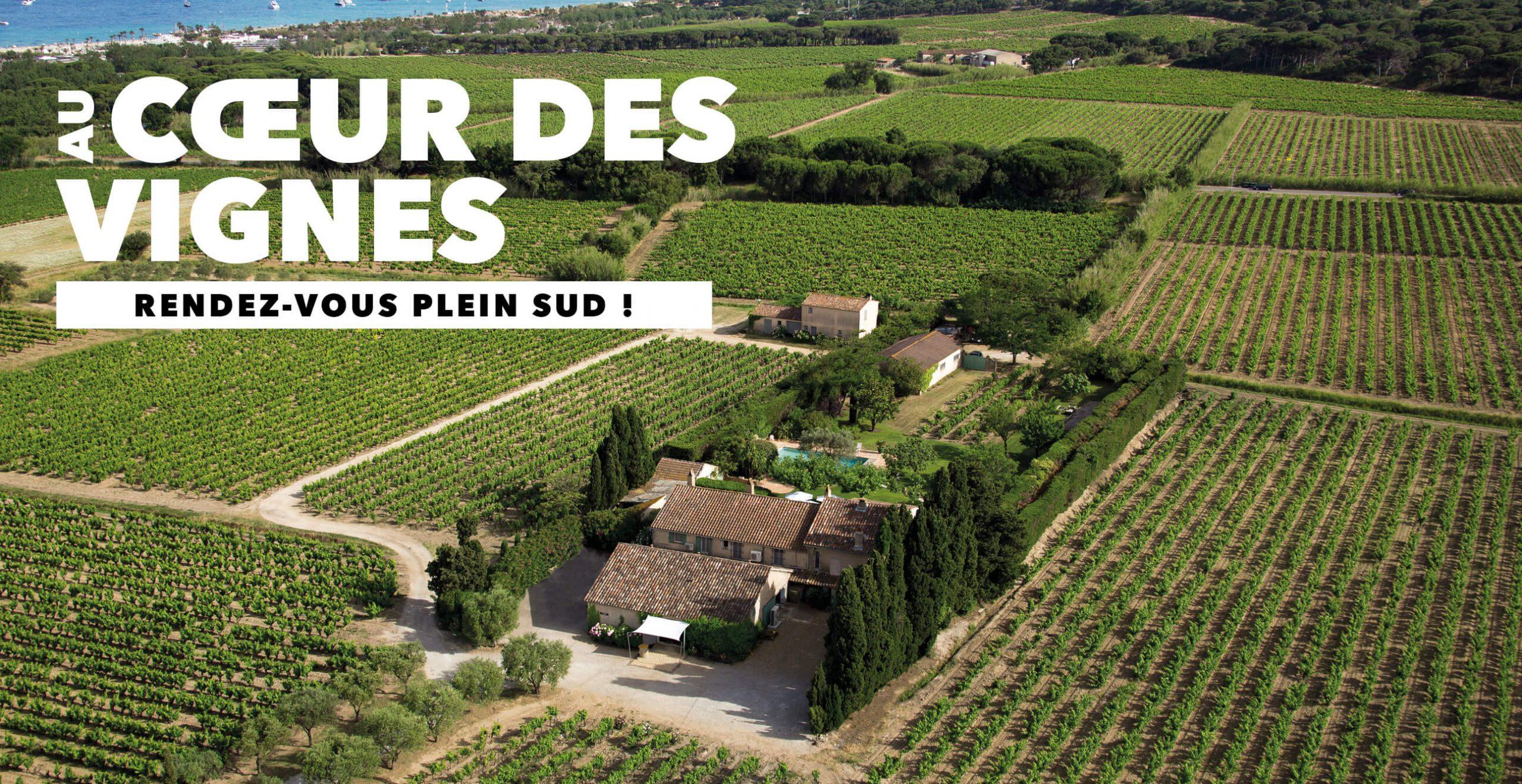 You are currently viewing Au cœur des vignes