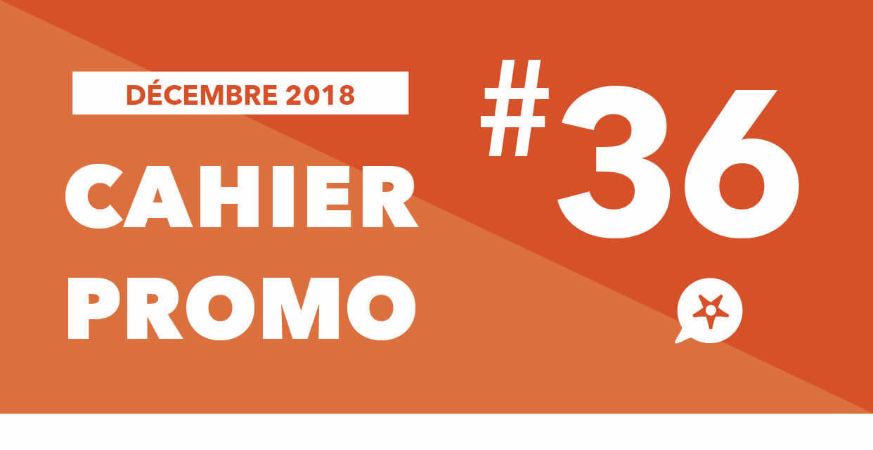You are currently viewing CAHIER PROMO DÉCEMBRE 2018